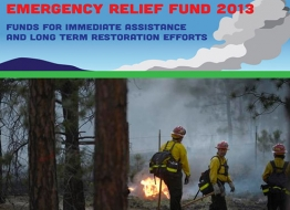 PPCF Emergency Relief Fund